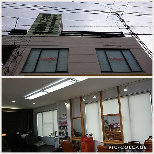 Collage 2018-01-1708_46_33.jpg